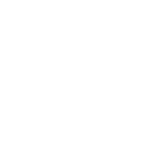 domotica icona